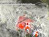 Allerta meteo per Basilicata e Puglia, alto rishcio nubifragi nelle prossime 5/7 ore nelle aree evidenziate in rosso