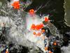 Fulminazioni e immagini satellitari
