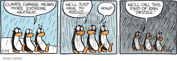 Cambiamenti Climatici Pinguini