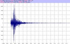 Forte terremoto in Nuova Zelanda