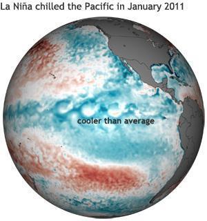 La Niña è legata al raffreddamento periodico delle acque equatoriali del Pacifico orientale (fonte NOAA Climate Portal)