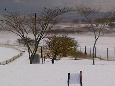 Grandine in Sud Africa
