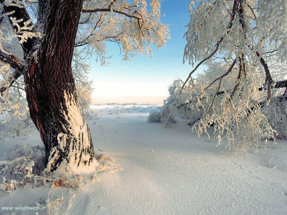 Meteo Montagna - le previsioni meteo per l'autunno e inverno 2012 2013