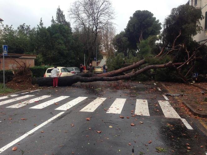 Tornado a Rosignano