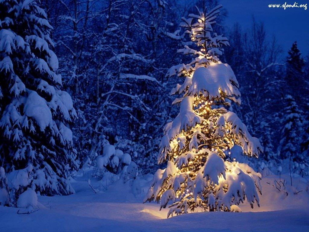 Meteo Natale 2012: tendenza e previsioni del tempo