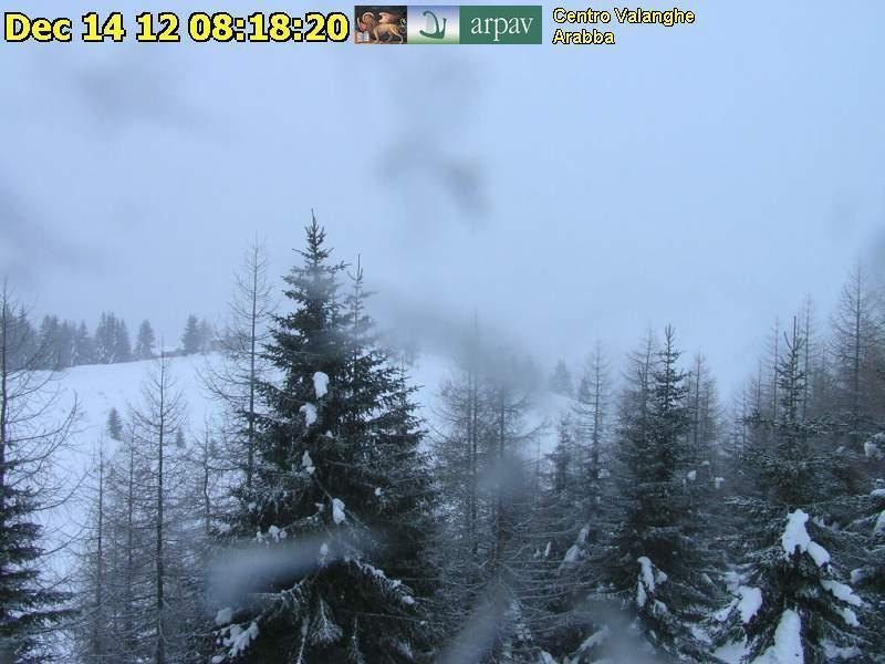 Veneto Neve 14 Dicembre 2012