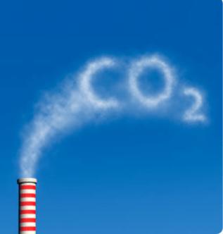 Greenpeace: 14 bombe ecologiche minacciano il mondo