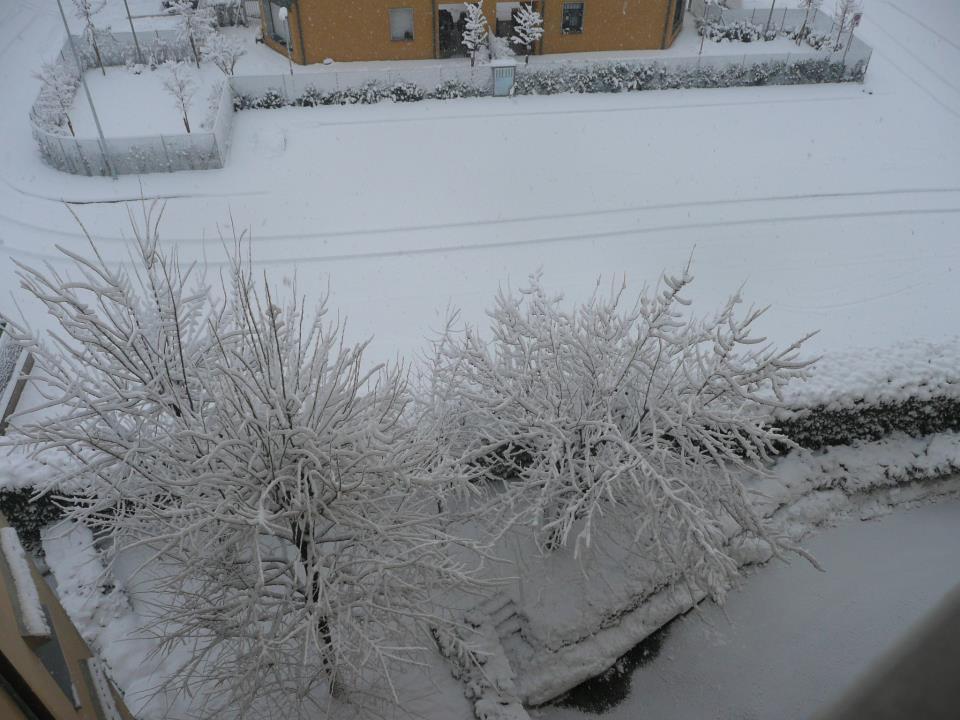 Neve in provincia di Bologna. Foto di Barbara GIusti