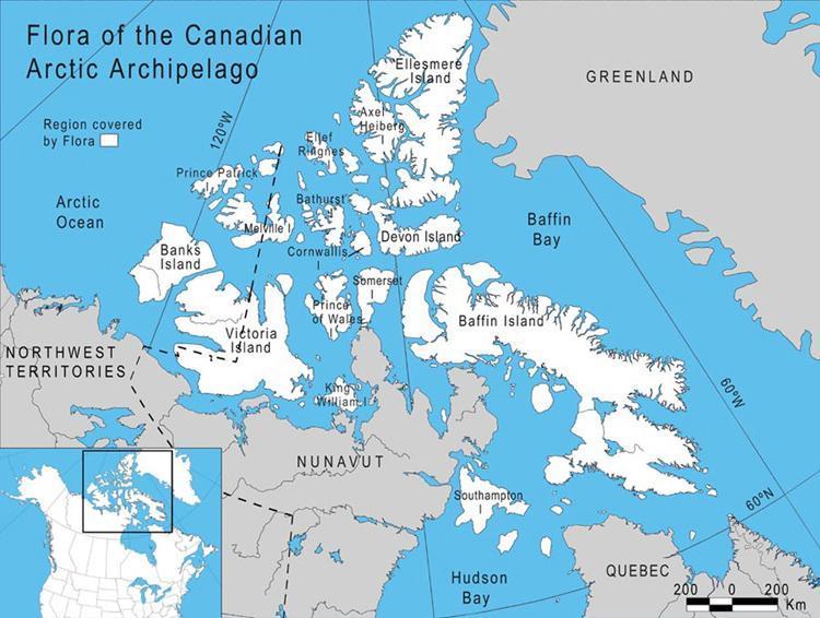 Ghiacciai dell'Arcipelago Artico del Canada (Fonte:nature.ca)