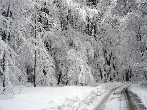 Puglia, Basilicata, Molise; previsioni meteo prossimi giorni: tornano freddo e neve