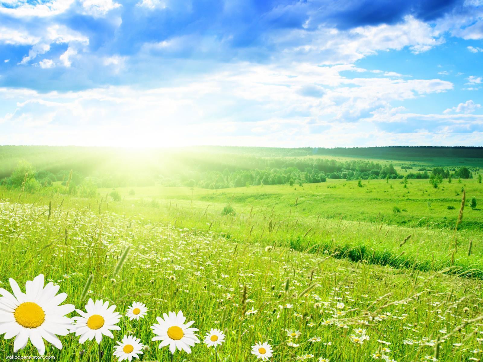 Previsioni meteo medio termine: avvio settimanale con Sole e caldo