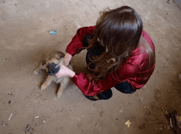 La ragazza che maltratta il cucciolo