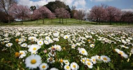 Lombardia, previsioni meteo fino a 7 giorni per ogni località
