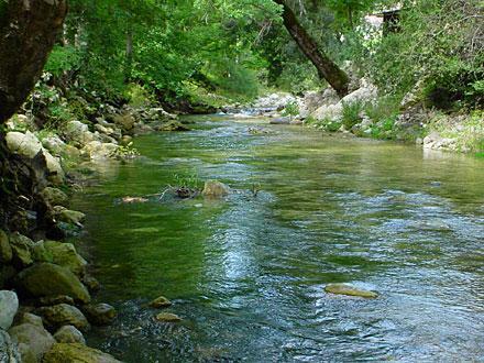 Allarme fiumi: i residui di farmaci danneggiano gli ecosistemi fluviali