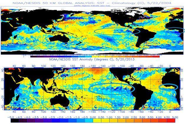 Confronto SSTA di fine Mggio. (2004 sopra, 2013 sotto) Fonte NOAA