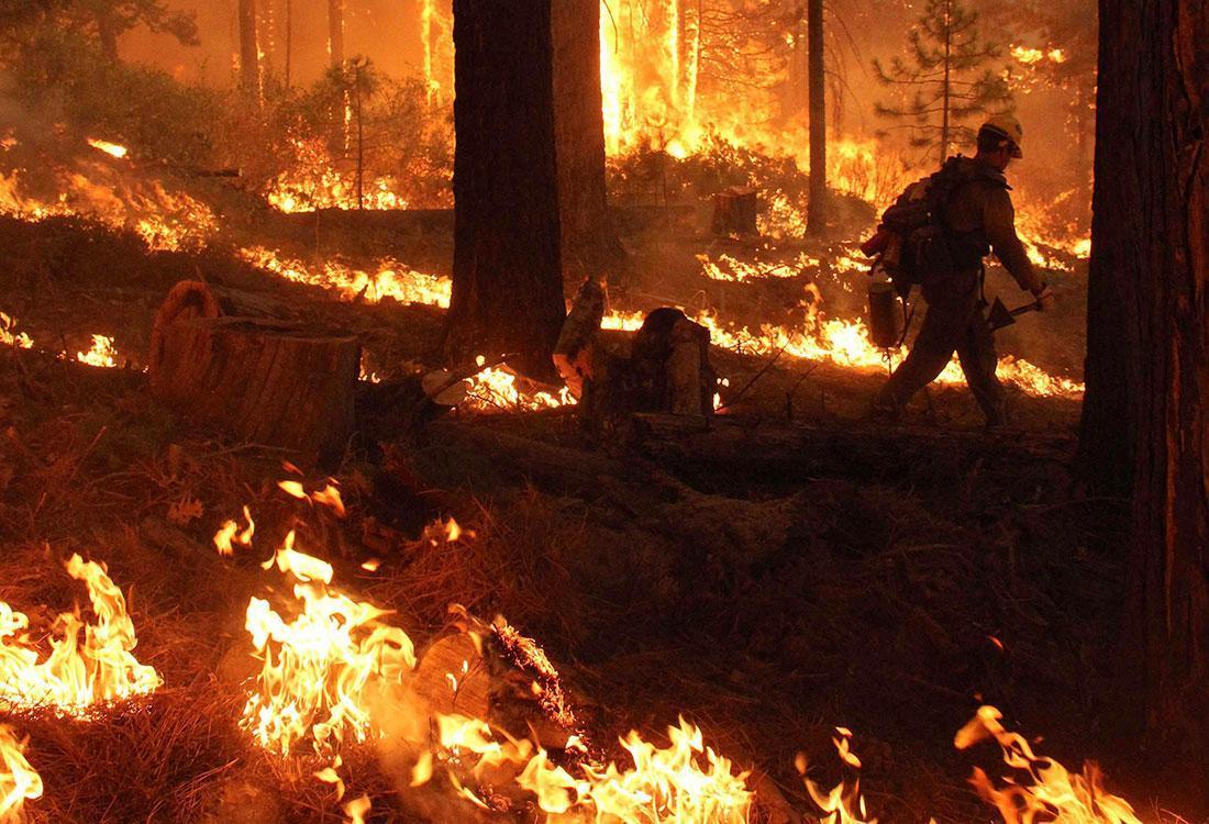 incendio Yosemite