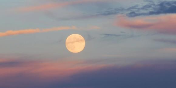 Amy Simpson-Wynne in Virginia ha postato questo bel crepuscolo, foto del 18 settembre 2013 Harvest Moon.