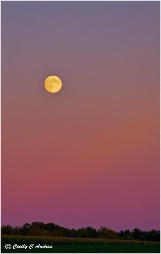 Vista del 18 settembre 2013 Harvest Moon da Cecily Andreu a Rochester, NY.
