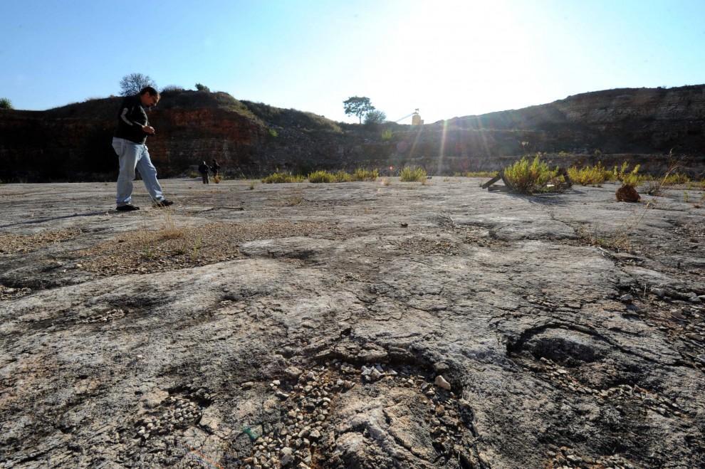 Bari : scoperte migliaia di impronte di dinosauri