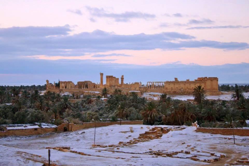 Neve nel deserto siriano - sito archeologico di Palmira