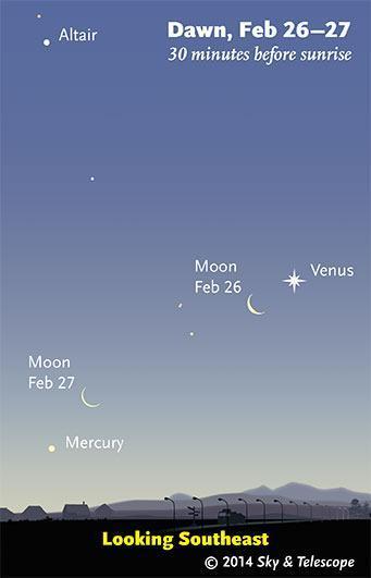 Spettacolo nei cieli: all'alba di domani Luna e Venere a braccetto