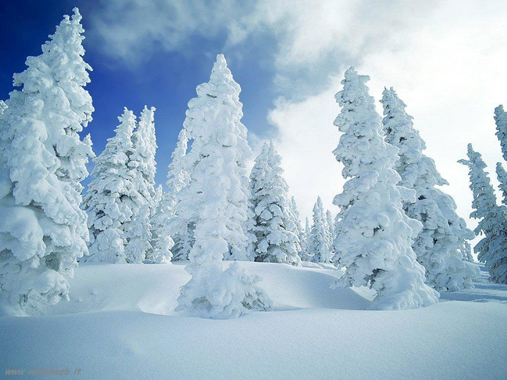 Torna la neve su Alpi e Appennino: abbondanti nevicate a partire dal week end