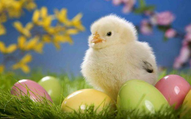 Auguri di buona Pasqua Meteo-Pasqua-abruzzo
