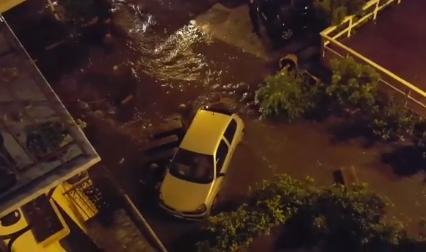 Nubifragio a Palermo, ecco i danni: alberi caduti e allagamenti