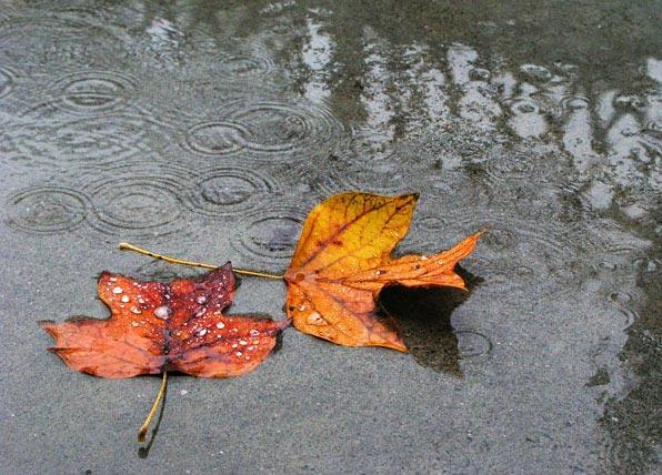 Meteo a lungo termine: autunno in gran spolvero, aria fredda in arrivo