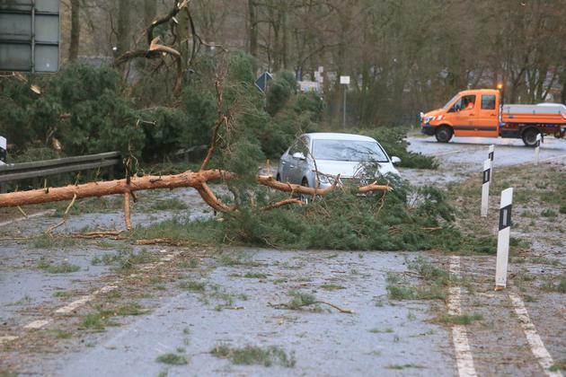 Violenta tempesta in Europa: 5 i morti a causa uragano Friederike