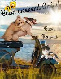 Immagini Buon Weekend Augura Un Felice Fine Settimana Ai