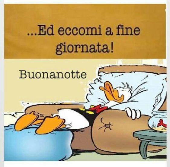 Immagini Nuove E Divertenti Per Augurare La Buonanotte Ai