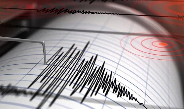 Terremoto nelle acque di Calabria, scossa di magnitudo 2.5