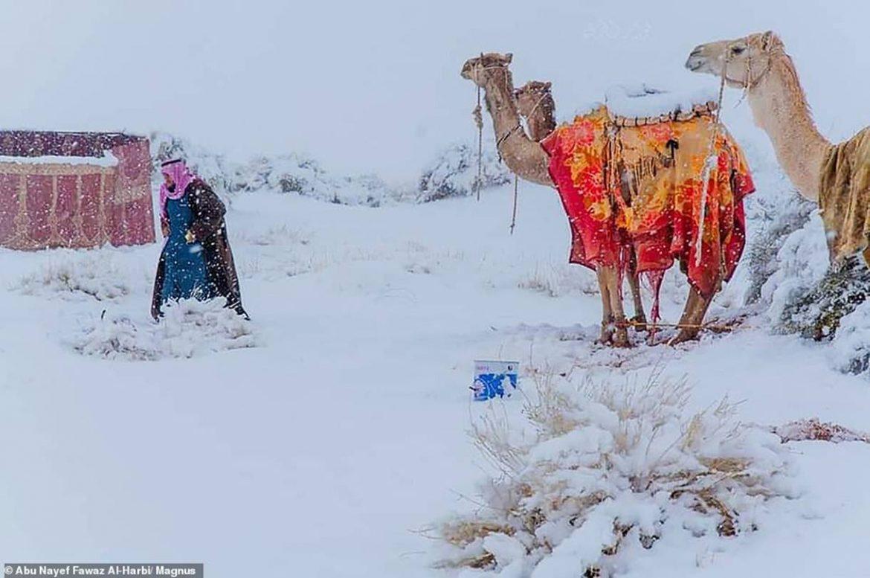 Nevica anche nel deserto del Sahara